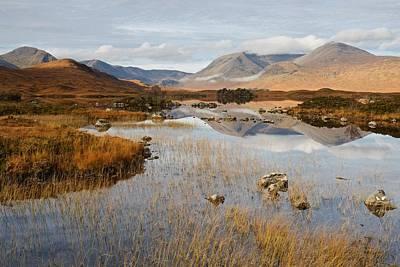 Photograph - Autumn On The Rannoch Moor by Stephen Taylor