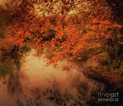 Autumn Leaves Photograph - Autumn On The River Sorgue by Robert Brown