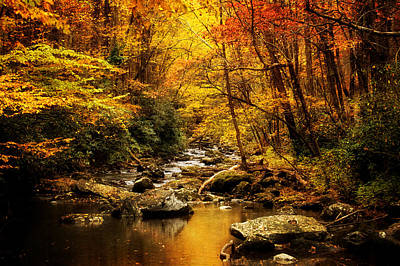 Yellow Photograph - Autumn On The Tellico River by Greg Mimbs