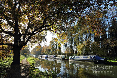 Photograph - Autumn On The Wey Canal Surrey Uk by Julia Gavin