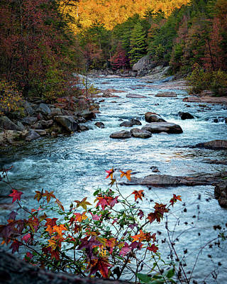 Autumn On Wilson Creek Art Print