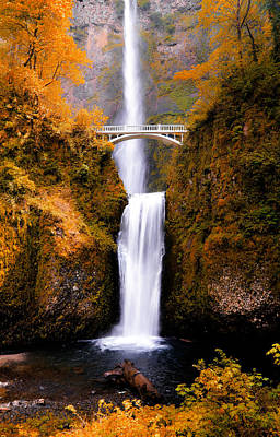 Photograph - Autumn Orange Multnomah Falls by Athena Mckinzie