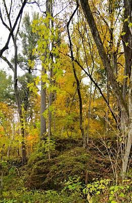 Photograph - Autumn Outcrop by Bonfire Photography