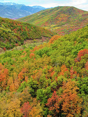 Photograph - Autumn Overlook by David King