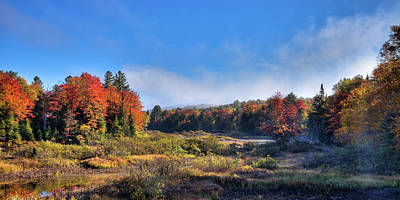 Art Print featuring the photograph Autumn Panorama At The Green Bridge by David Patterson