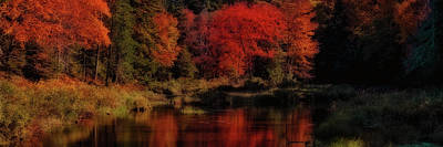 Autumn Panorama Art Print by David Patterson