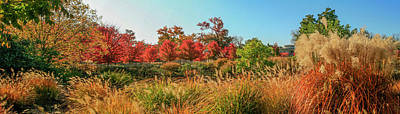 Autumn Panorama  Art Print by Garry McMichael