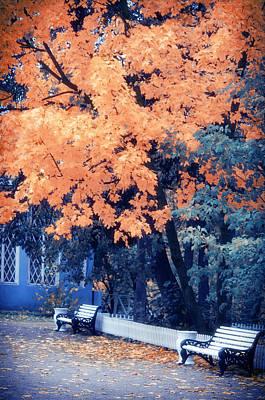Park Benches Photograph - Autumn Park by Konstantin Sevostyanov