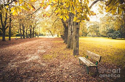 Gravure Photograph - Autumn Park Prints Bench Canvas Bologna Prints Casalecchio Talon by Luca Lorenzelli