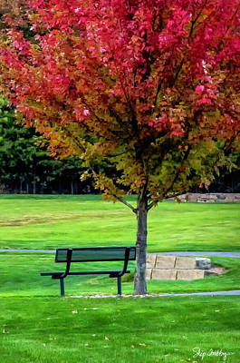 Photograph - Autumn Park by Skip Tribby