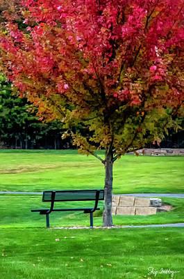 Photograph - Autumn Park by Skip Tribby