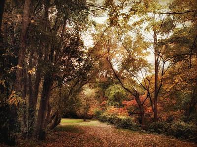Rural Landscapes Photograph - Autumn Passage by Jessica Jenney