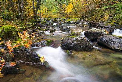 Maple Season Photograph - Autumn Passing by Mike  Dawson