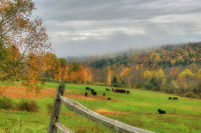 Photograph - Autumn Pasture -  by Joann Vitali