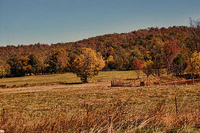 Photograph - Autumn Pasture by Rick Friedle