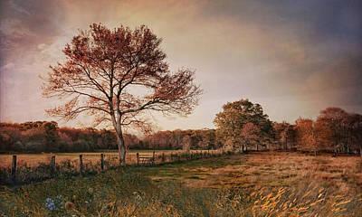 Photograph - Autumn Pasture by Robin-Lee Vieira