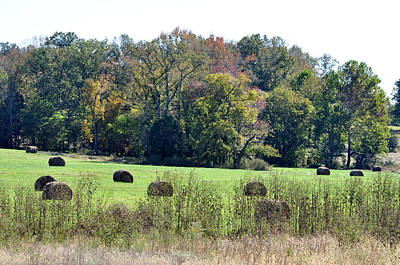 Arkansas Photograph - Autumn Pastures by Jan Amiss Photography