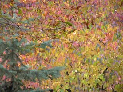Photograph - Autumn Pattern by Oleg Zavarzin