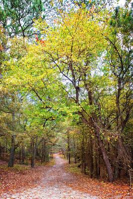 Photograph - Autumn Path by Alan Raasch
