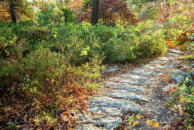 Photograph - Autumn Path In Woodward Park - Tulsa Oklahoma by Gregory Ballos