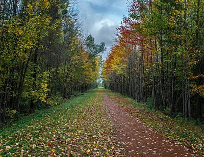 Mid West Photograph - Autumn Path by Joseph Smith