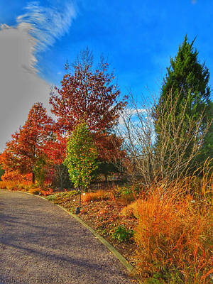 Photograph - Autumn Path by Kathi Isserman