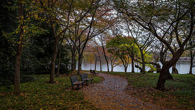 Photograph - Autumn Path by Michael Donahue
