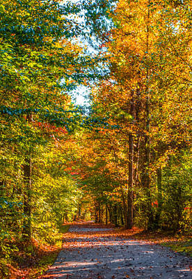 Photograph - Autumn Path by Parker Cunningham