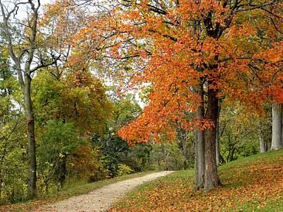 Wall Art - Photograph - Autumn Path by Robert Papps