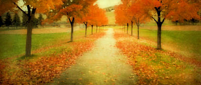Photograph - Autumn Path by Theresa Tahara