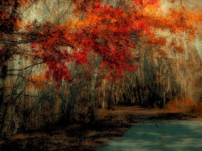 Photograph - Autumn Pathway by GJ Blackman