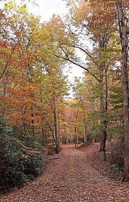 Photograph - Autumn Pathway by Joe Duket