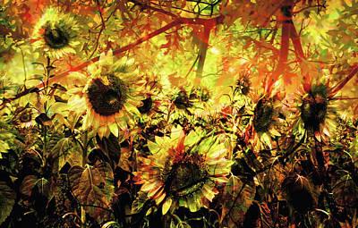 Autumn Art Print by Paul Drewry