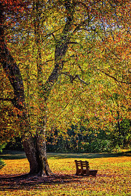 Photograph - Autumn Peace by Debra and Dave Vanderlaan