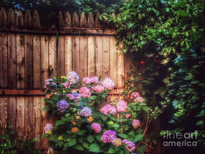 Photograph - Autumn Peace - Garden by Miriam Danar