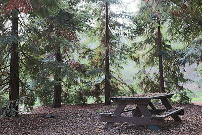 Photograph - Autumn Picnic In The Woods  by Christy Pooschke