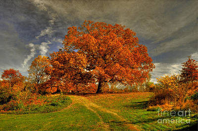 Country Lanes Digital Art - Autumn Picnic On The Hill by Lois Bryan