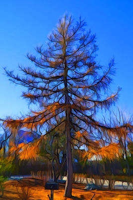 Impressionist Mixed Media - Autumn Pine Tree by Lilia D