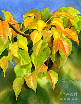 Colored Leaves Painting - Autumn Plum Leaves by Sharon Freeman