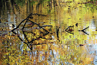 Photograph - Autumn Pond Abstract by Debbie Oppermann