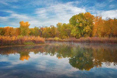 Photograph - Autumn Pond by Darren White