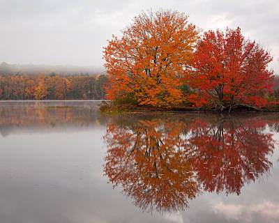 Autumn Pond Art Print by Patrick Downey