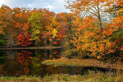 Photograph - Autumn Pond Reflections by Andrew Kazmierski