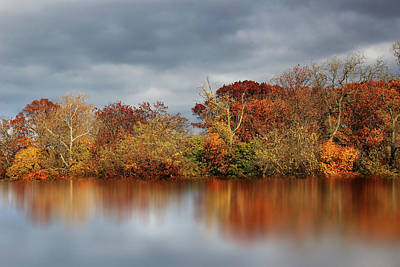 Photograph - Autumn Pond Reflections by Jessica Jenney