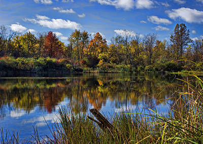 Photograph - Autumn Pond by Ron Grafe