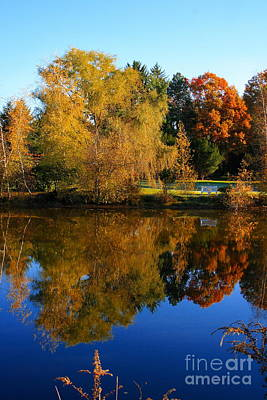 Photograph - Autumn Pond Scene by Angela Rath