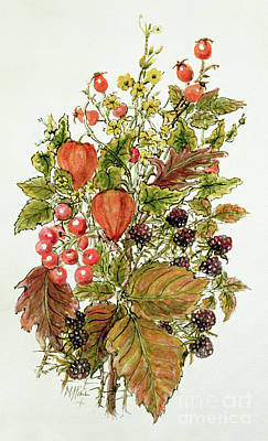 Autumn Leaf Drawing - Autumn Posy by Nell Hill