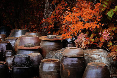 Photograph - Autumn Pots by Roy Cruz