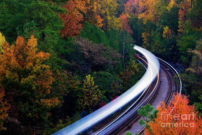 Autumn Rails Art Print