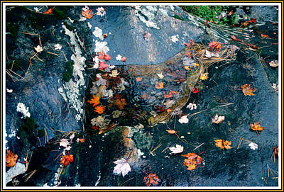 Whimsically Poetic Photographs Rights Managed Images - Autumn Rain on Blue Stone Royalty-Free Image by Wayne King